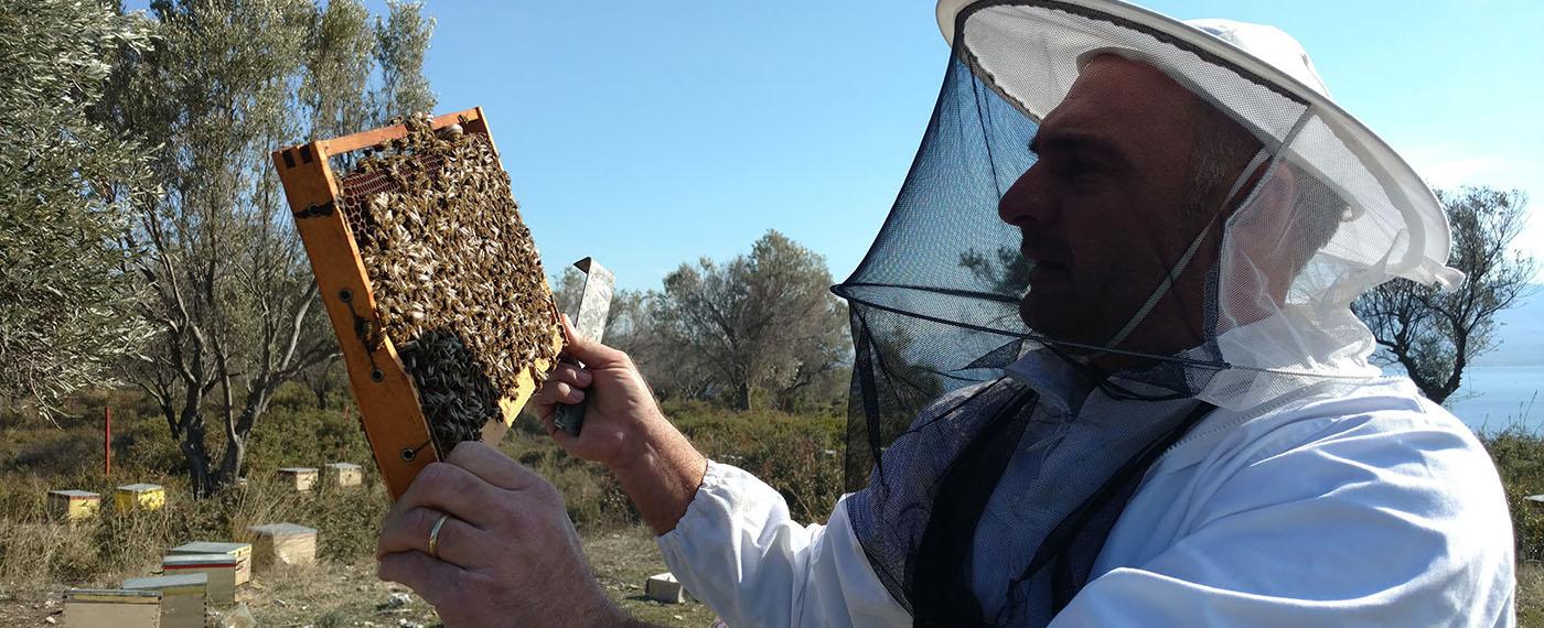 Παράγουμε μέλι με φυσικό τρόπο χωρίς καμία πρόσμιξη